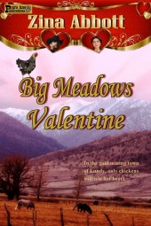 Big Meadows Valentine (Eastern Sierra Brides 1884 Book 1)