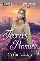 Texas Promise (The Camerons of Texas Book 2)