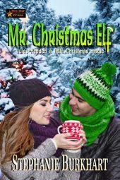 Mr. Christmas Elf